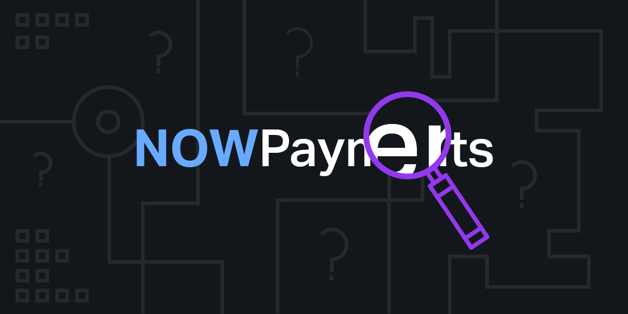 What is NOWPayments?