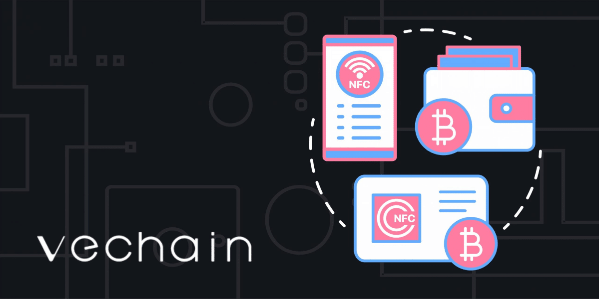 VeChain Explained: Blockchain Review, VET Cryptocurrency | NOWPayments